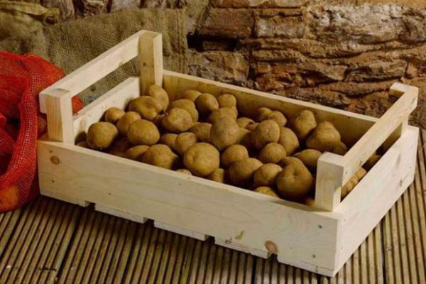 ящики для хранения картофеля в погребе