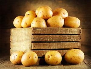Где хранить картошку в квартире: 5 альтернативных способов
