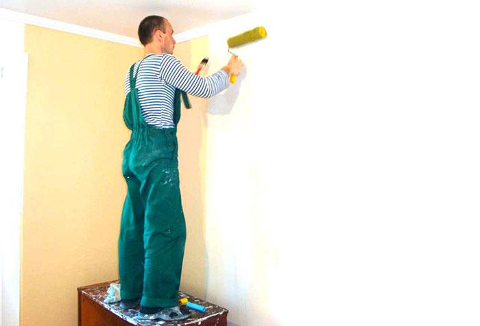 Какую грунтовку использовать при перед покраской стен