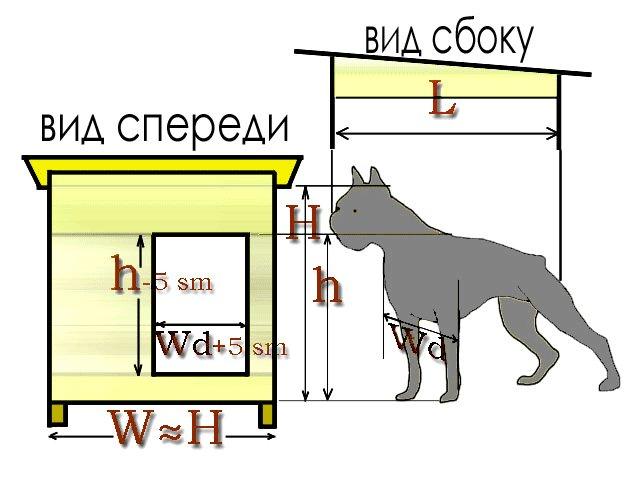 Будка для немецкой овчарки: размеры, виды и создание своими руками