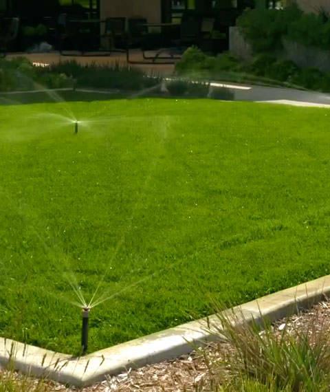система полива газона