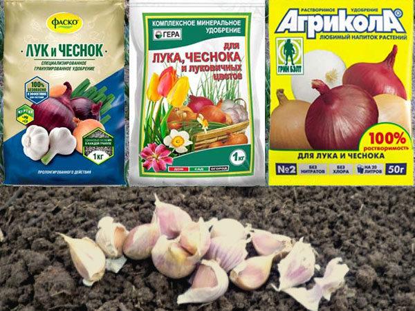 Чеснок: гербицид после всходов для дезинфицирования, нашатырный спирт для подкормки и обеззараживания - первичная обработка семян весной или осенью перед посадкой русский фермер