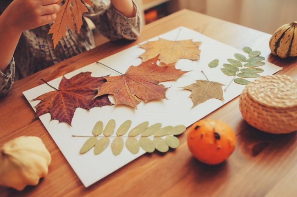Осенние листья из бумаги + шаблоны и трафареты для вырезания