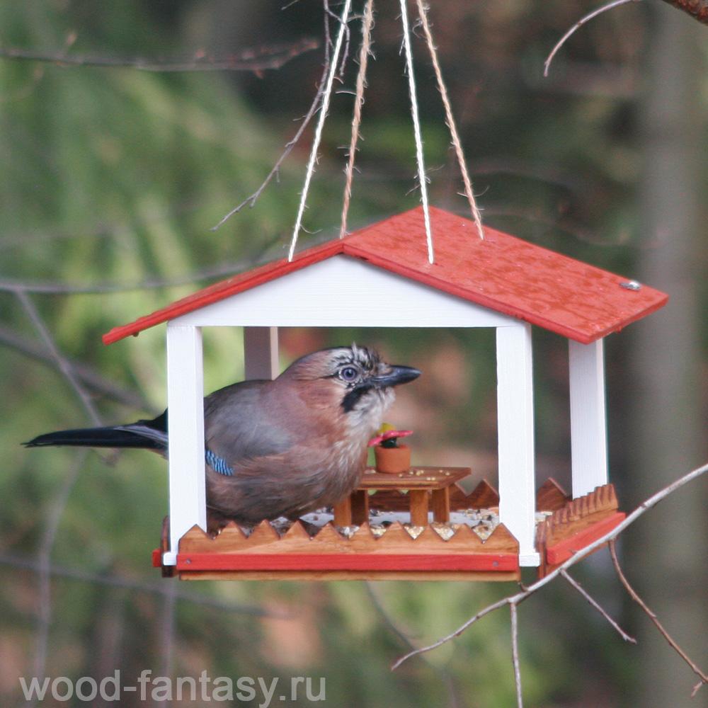Как сделать кормушку для птиц своими руками - деревянную, из бутылок