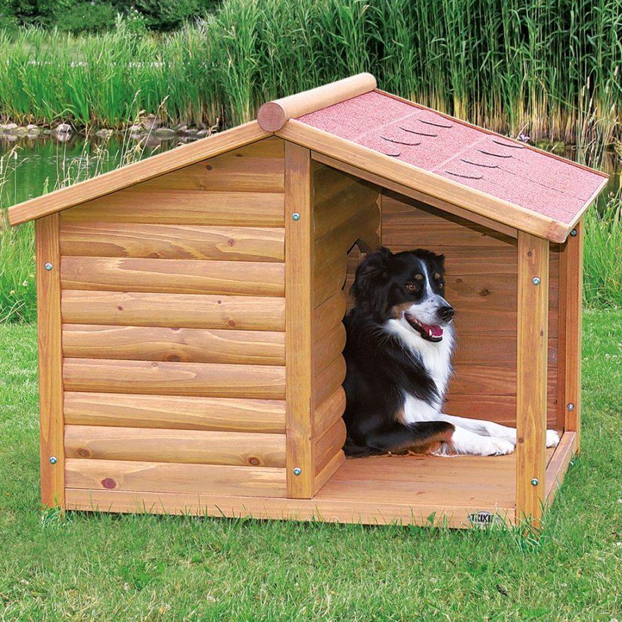 будка для собаки своими