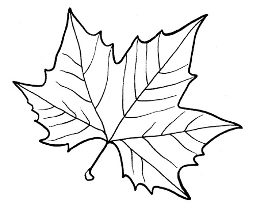 Аппликация  из листьев. 100 фото и идей