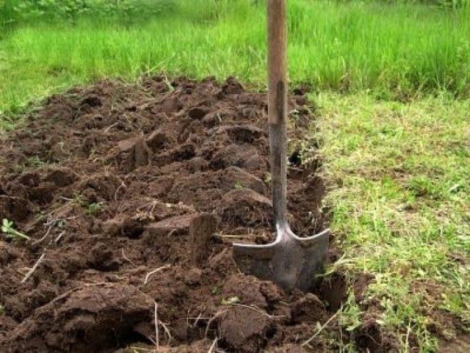Стройремонткак выровнять участок своими руками: правильное выравнивание земли под строительство