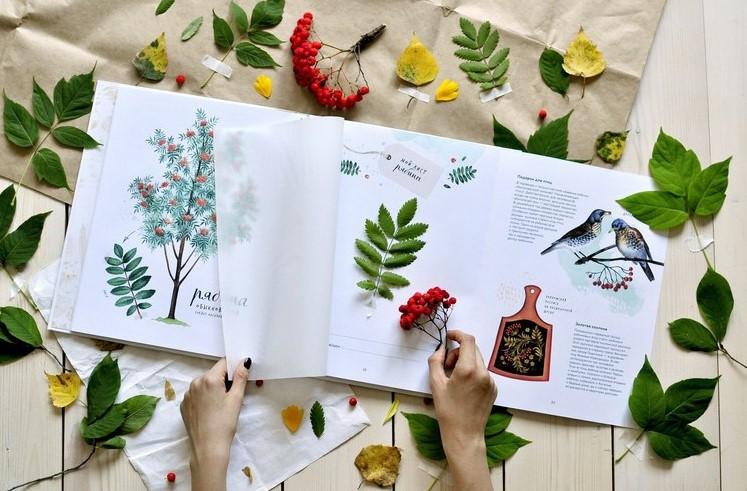 гербарий из осенних листьев для детей