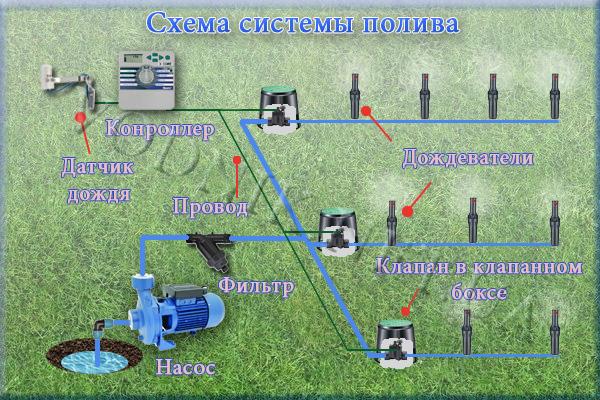 Автоматический полив газона: как сделать систему автоматического полива газона своими руками? |