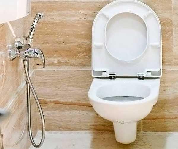 60 фото [гигиенический душ для унитаза со смесителем] #2019