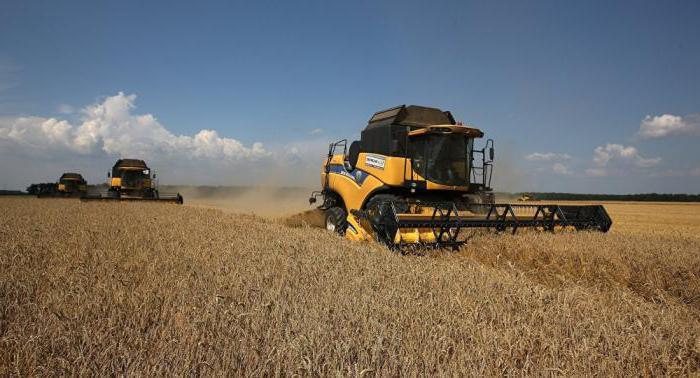 Форма регистрации для сельскохозяйственной деятельности: ип или кфх