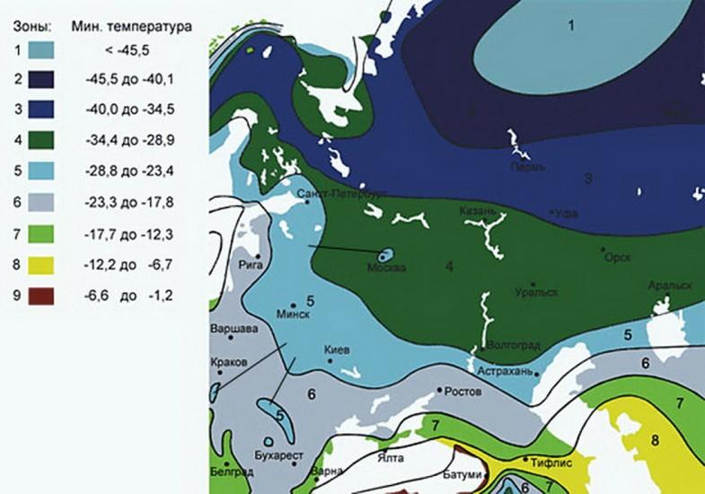 Зоны морозостойкости: что, где и когда сажать будем?