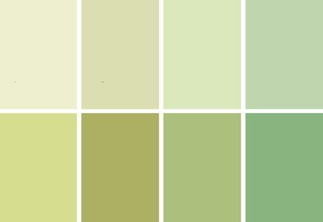 Бело-зеленый цвет и сочетание с ним