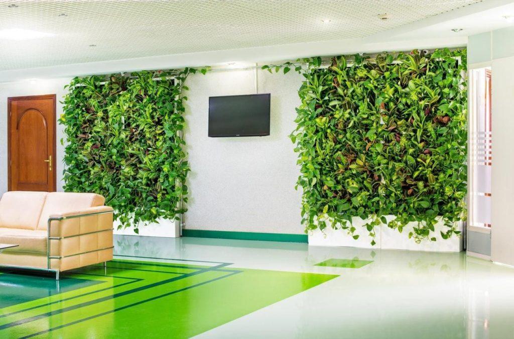 Зеленый цвет стен в интерьере, фото