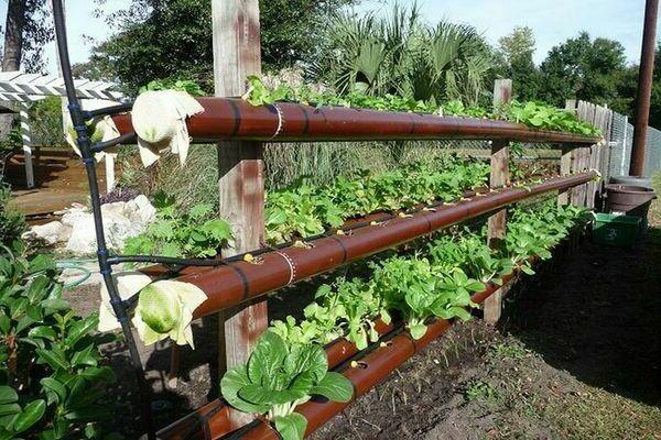 Чем можно огородить грядки своими руками на участке