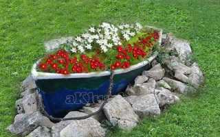 Клумба цветущая все лето: подбираем и сажаем цветы