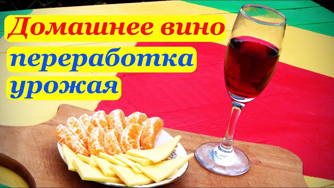 сколько сахара на литр вина из винограда
