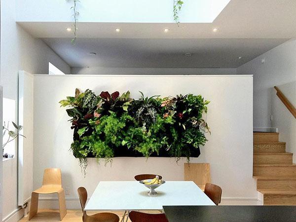 Уже «построено» 15% великой зеленой стены в сахаре