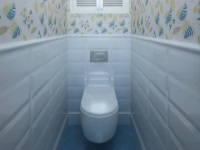 Дизайн ванной комнаты с туалетом – фото интерьера совмещенного санузла