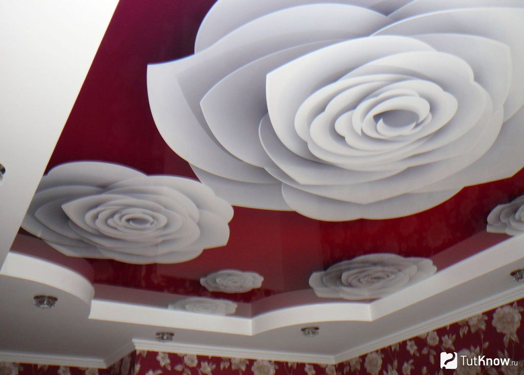 Натяжные потолки с фотопечатью: 100+ фото, примеры красивых идей и рисунков