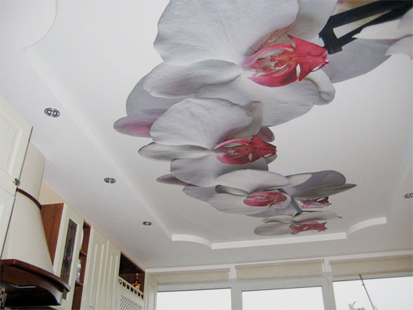 Натяжные потолки с рисунком: картинки и фото, художественные наклейки с цветами, образцы узоров и дизайн интерьера