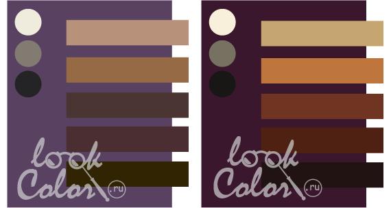 какой цвет фиолетовый