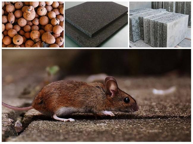 Какой утеплитель не грызут мыши: в каком не живут грызуны