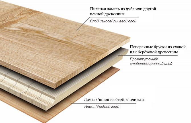 Виды лиственных и хвойных деревьев растущих в россии