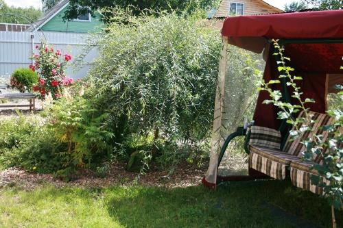 ✅ как вырастить иву плакучую из веточки. размножение ивы черенками, выращивание и уход за саженцем - живой-сад.рф