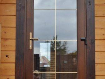 двери пвх входные
