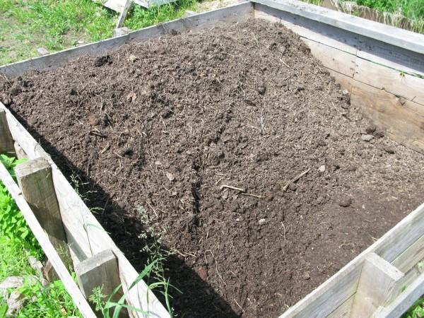 Созревание компоста: методы работы с сырьем и ускорители компостирования