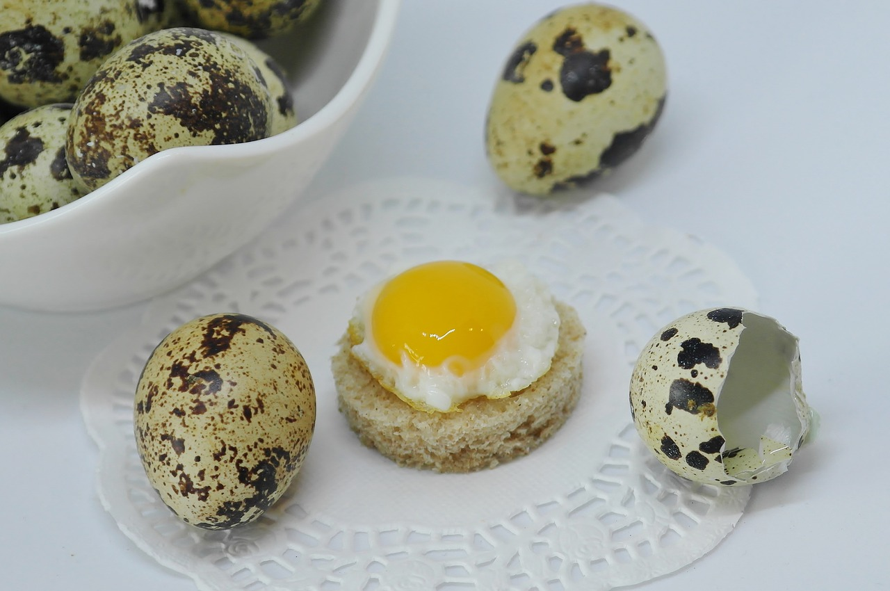 Перепелиные яйца: польза и вред, как употреблять