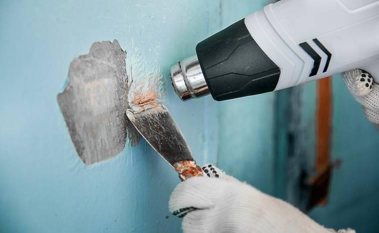 Краска для стен в квартире: как выглядит, виды, как выбрать интерьерную моющуюся для внутренней отделки, рейтинг марок
