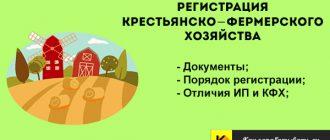 Регистрация сельскохозяйственного бизнеса: ип или кфх