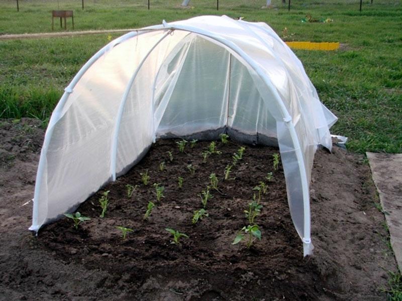 Самая лучшая пленка для теплиц и парника - долговечная и прочная: варианты, отзывы, достоинства и недостатки, какую и какого производителя выбрать – все о томатах. выращивание томатов. сорта и рассада.