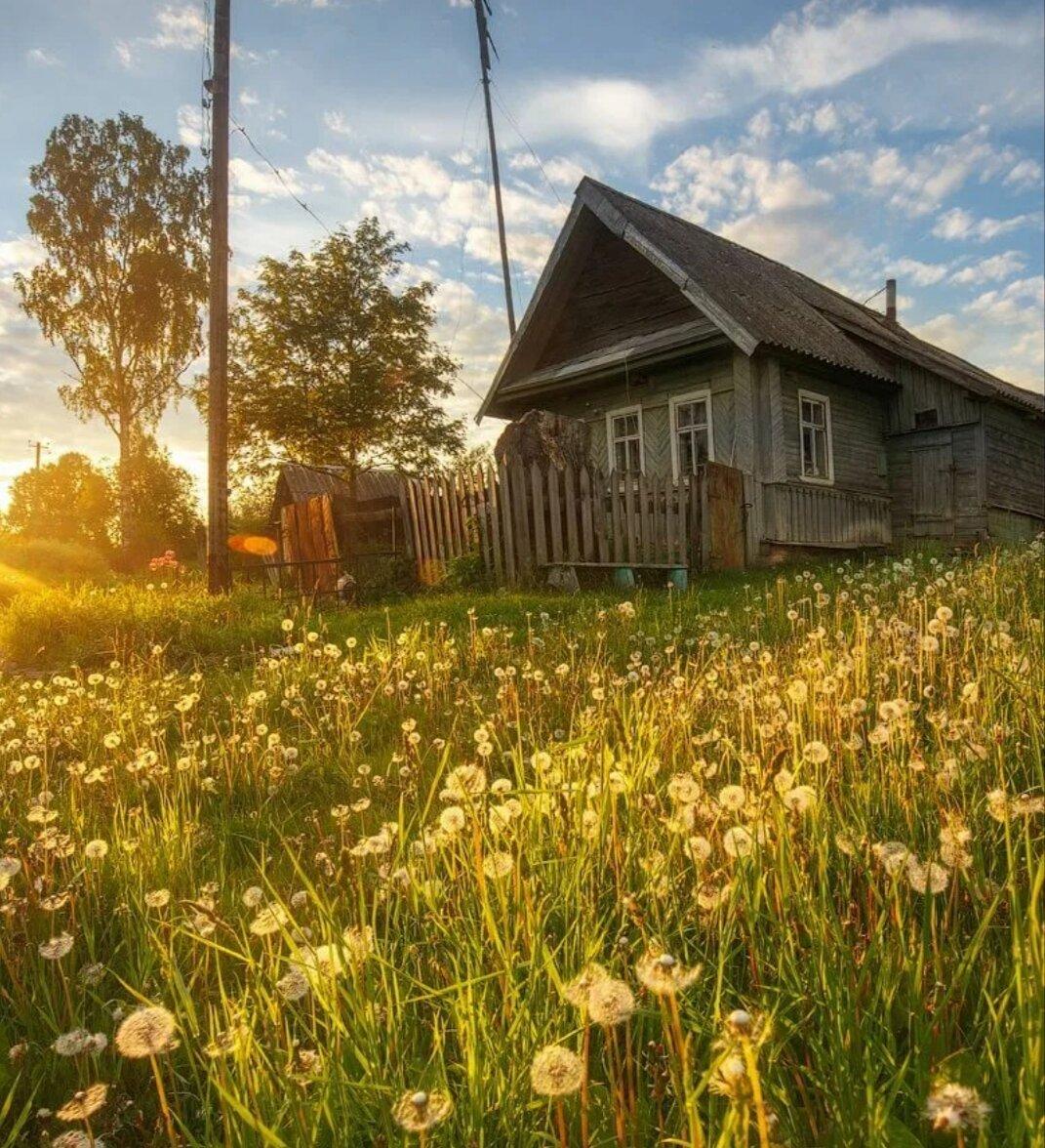 Переезд в деревню: плюсы и минусы. реальная жизнь на селе