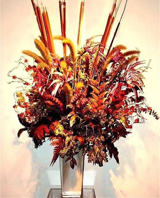 Сухоцветы: названия и фото, описания видов и сорта