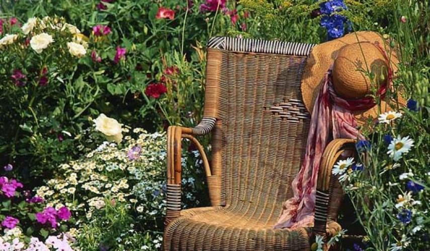 оформление клумбы многолетними цветами фото