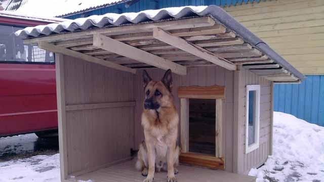 будка для собаки своими руками фото