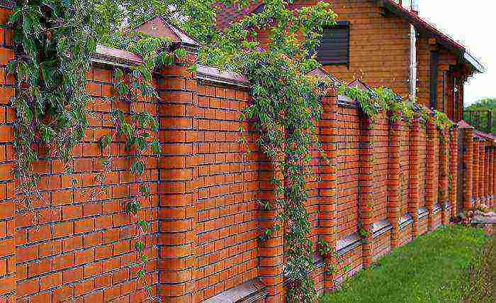 Как установить верхнюю планку на забор из профнастила