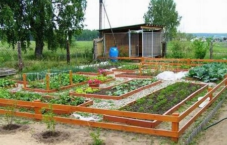 Как устроить грядки в огороде? | cельхозпортал
