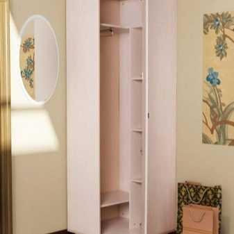 шкаф купе в коридор фото современные