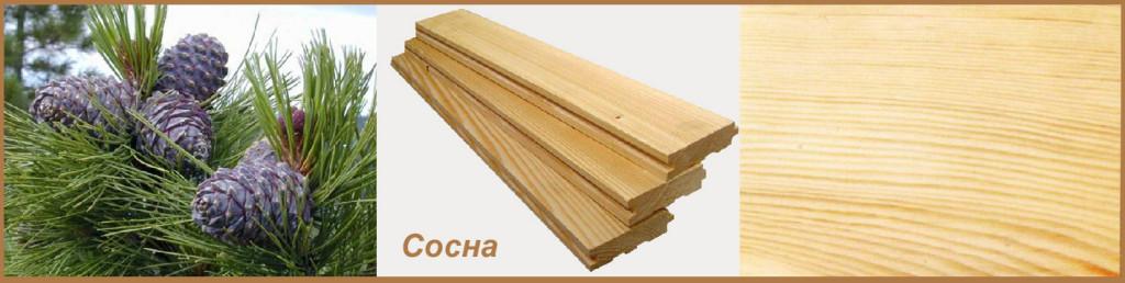 Древесина дуба (24 фото): плотность сухой древесины кг/м3, свойства и вес 1 куба. тверже ли она ясеня и лиственницы? цвет и применение