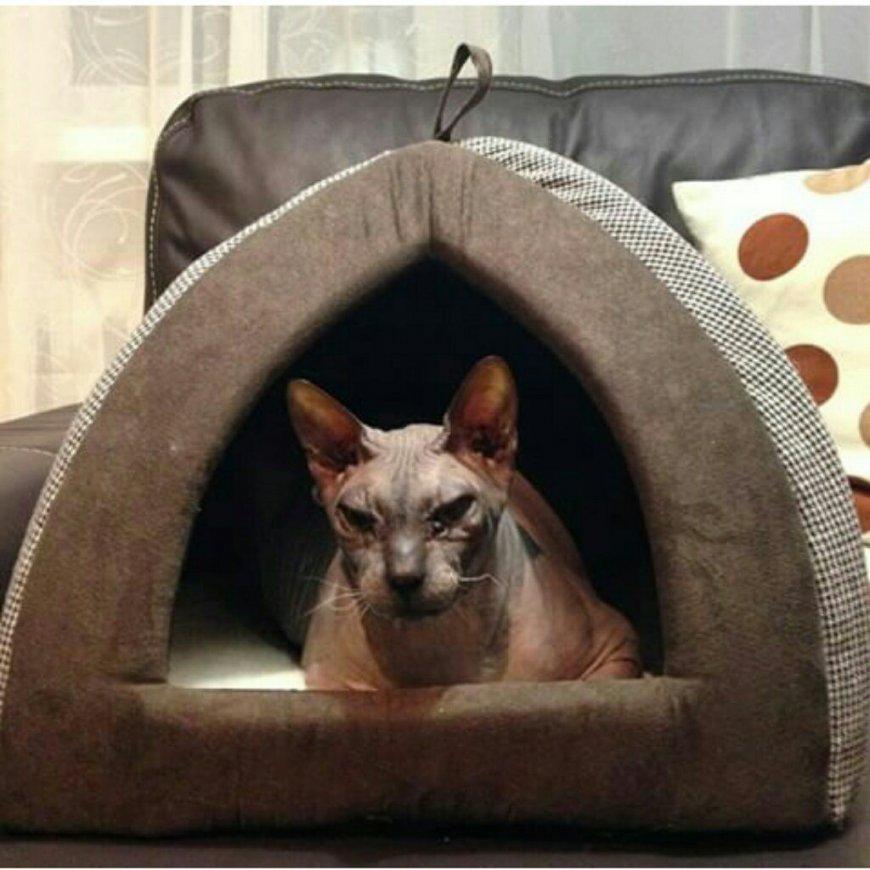 Домик для кошки из дерева своими руками: из фанеры и дсп с чертежами, схемами, проектом и размерами, как сделать или смастерить, разные виды - полки, дома и прочие варианты