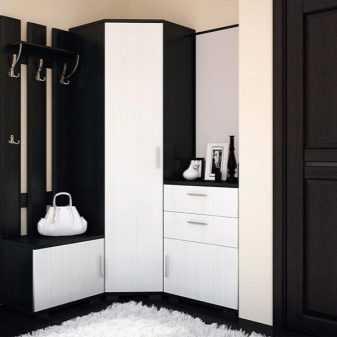 Шкаф в прихожую – 115 фото современных трендов дизайна и вариантов стильного оформления