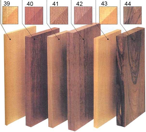 лиственные породы деревьев список