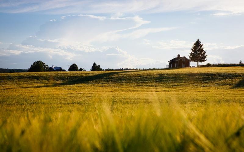 Сроки дачной амнистии: на дома, для снт, в 2020 году, продление, на землю, действия   ипотека и недвижимость