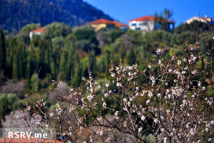 Курорт ставрос – райский уголок для семейного отдыха