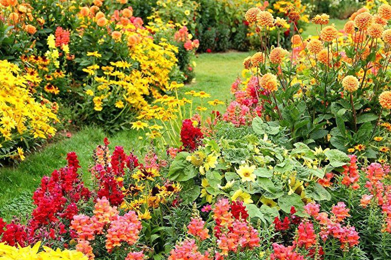 многолетние неприхотливые цветы