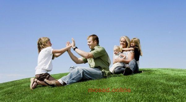 Земельный участок многодетным семьям: условия и порядок предоставления